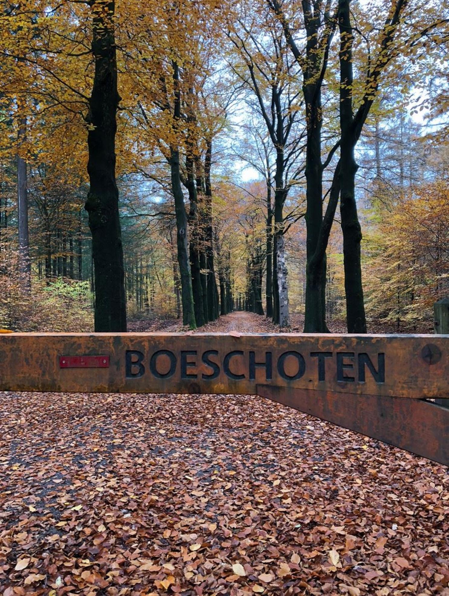 unieke-topvilla-in-garderen-prachtige-natuur-wild-rust-luxe-jacuzzi-sauna